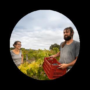 vignerons viticulteurs vins aoc touraine azay le rideau domaine Jennifer Bariou Thibaut Bodet
